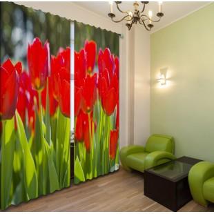 "ФотоШторы ""Красные тюльпаны"""