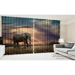"""ФотоШторы широкие """"Слон в саванне"""""""