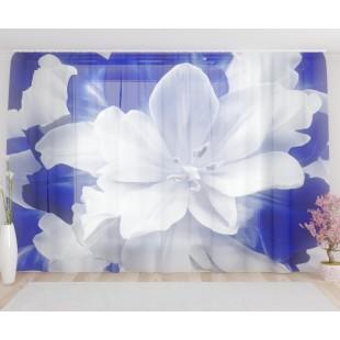 """ФотоТюль широкий """"Великолепный бело-голубой тюльпан"""""""