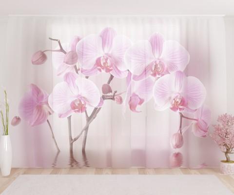 """ФотоТюль широкий """"Арка из орхидей"""""""