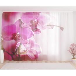 """ФотоТюль широкий """"Нежнейшая орхидея"""""""