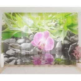 """ФотоТюль широкий """"Несравненная орхидея"""""""