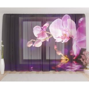 """ФотоТюль широкий """"Орхидея в сумерках"""""""