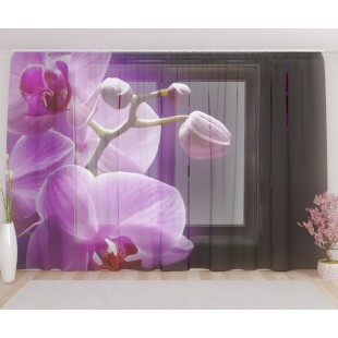 """ФотоТюль широкий """"Орхидея в сумраке"""""""