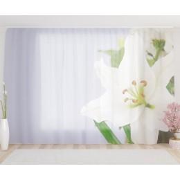 """ФотоТюль широкий """"Очаровывающая орхидея"""""""