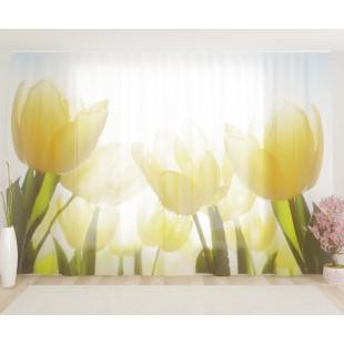 """ФотоТюль широкий """"Тюльпаны в росе"""""""