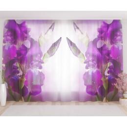 """ФотоТюль широкий """"Фиолетовый цветок в росе"""""""