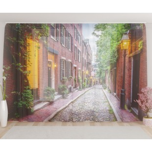 """ФотоТюль широкий """"Улица в Бостоне"""""""