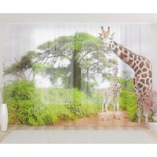 "ФотоТюль широкий ""Два жирафа"""