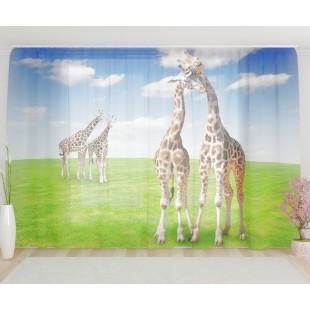 "ФотоТюль широкий ""Жирафы на лугу"""