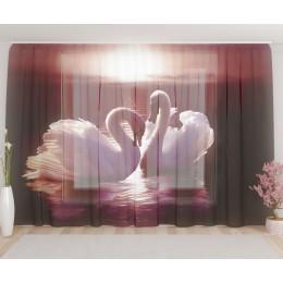 """ФотоТюль широкий """"Лебеди"""""""