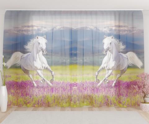 """ФотоТюль широкий """"Прекрасный конь"""""""
