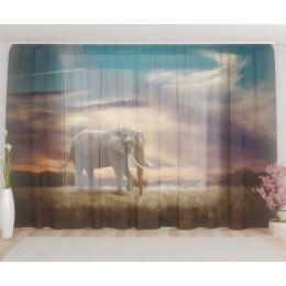 """ФотоТюль широкий """"Слон в саванне"""""""
