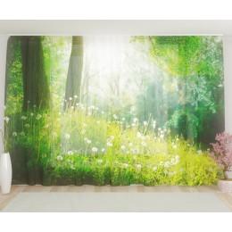 """ФотоТюль широкий """"Рассвет в лесу"""""""
