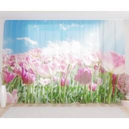 """ФотоТюль широкий """"Утро в тюльпановом поле"""""""