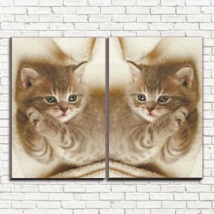 """Модульная картина """"Дымчатый котенок 2"""""""
