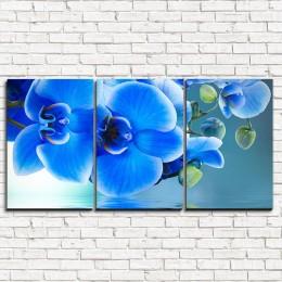 """Модульная картина """"Голубая орхидея 3-1"""""""