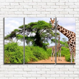 "Модульная картина ""Два жирафа 3-2"""