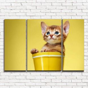"""Модульная картина """"Котенок рыжий 3-2"""""""