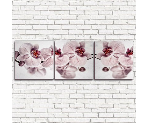 """Модульная картина """"Бежевые цветы 3-3"""""""