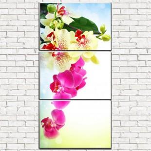 """Модульная картина """"Веточка орхидеи 3-6"""""""