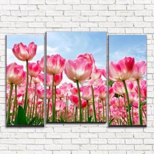 """Модульная картина """"Высокие тюльпаны 3-7"""""""