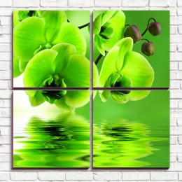"""Модульная картина """"Зеленая орхидея 4-3"""""""