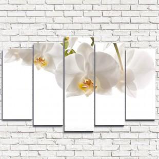 """Модульная картина """"Белые орхидеи 5"""""""
