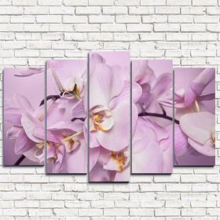 """Модульная картина """"Божественная орхидея 5"""""""