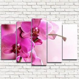 """Модульная картина """"Нежнейшая орхидея 5"""""""