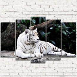 "Модульная картина ""Белый тигр 5"""