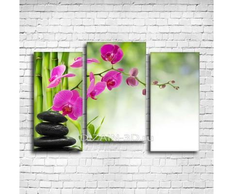 """Модульная картина """"Камни и бамбук с орхидеей"""""""
