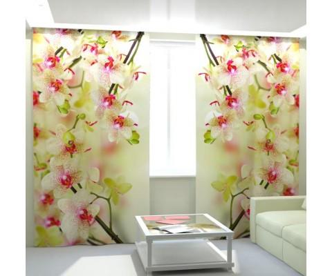 """ФотоШторы """"Воздушные орхидеи"""""""