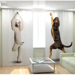 """ФотоШторы """"Танцующие собаки 2"""""""