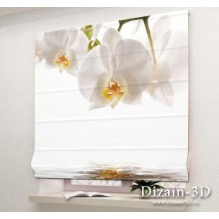 """Римские ФотоШторы """"Белые орхидеи"""""""
