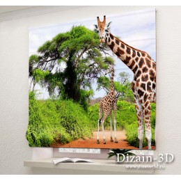 """Римские ФотоШторы """"Два жирафа"""""""