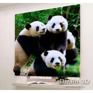 """Римские ФотоШторы """"Счастливые панды"""""""