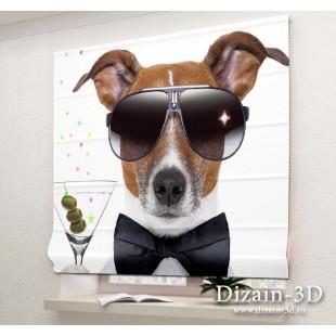 """Римские ФотоШторы """"Крутая собака"""""""
