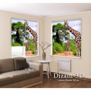 "Рулонные ФотоШторы ""Два жирафа"""