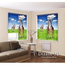 "Рулонные ФотоШторы ""Жирафы на лугу"""