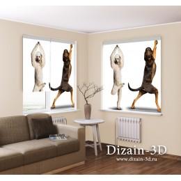 """Рулонные ФотоШторы """"Танцующие собаки"""""""